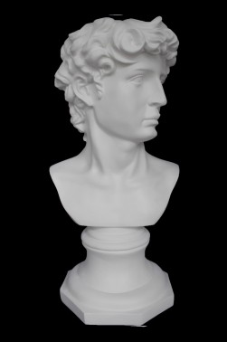 Wooden Mannequin & Models: David Head Sculpture