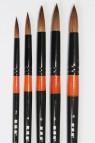 XDT Quality Brush: 950 Kolinsky Pointed Round Set 5's