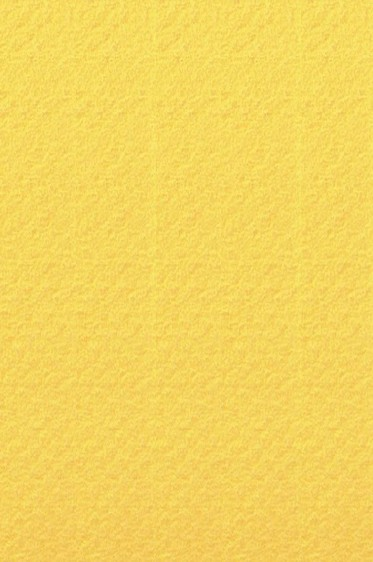 Canson Pastel Paper Mi-Teintes: Canary 160gsm ROLL 60 x 10 meters