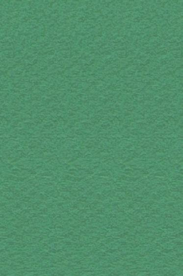 Canson Pastel Paper Mi-Teintes: Viridian 160gsm