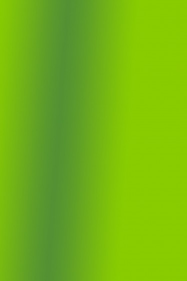 Createx Wicked Colors: Pearl Lime Green 59ml