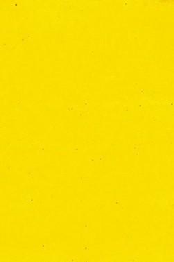 Encaustic Paints: Cadmium Yellow Medium 40ml
