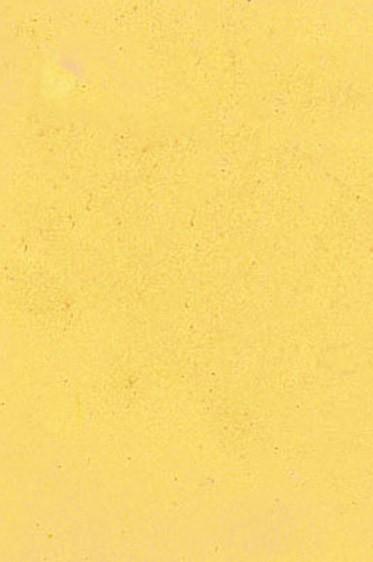 Encaustic Paints: Naples Yellow 40ml