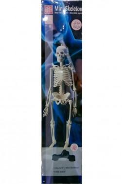 Wooden Mannequin & Models: Human Mini-Skeleton Model