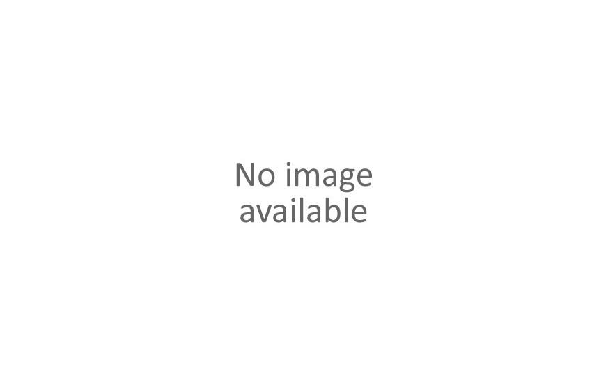 Matt Cutter & Blade